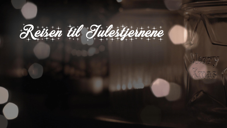 Reisen til Julestjernene: Snekker Andersen