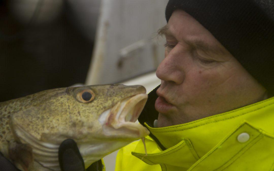 Fersk fisk i helgene